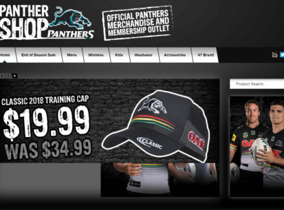 Panthers Store